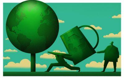 Lotgenoten in de groene heimat